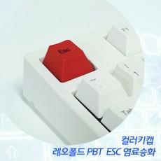 레오폴드 PBT  ESC 염료승화 컬러키캡 - 영문정각(상단)
